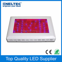 3 years warranty 500w apollo 8 led grow light