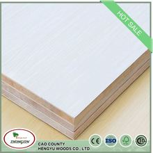 HOT SALE door skin 12mm thickness wood buthcer block board
