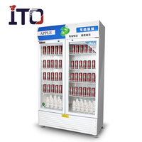 ITO-R20-2 Commercial Stand Beverage Display Cooler / Refrigerator