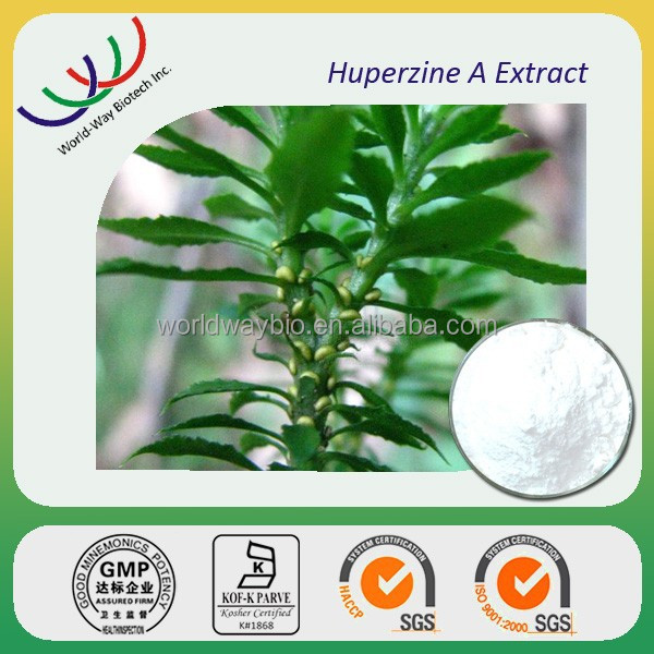 HACCP KOSHER FDA pure natural HPLC 99% huperzine A extract powder huperzine serrate p.e.