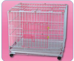 D3374 dog cages