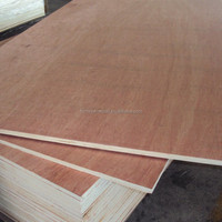 E1 Glue Poplar Core Commercial Plywood