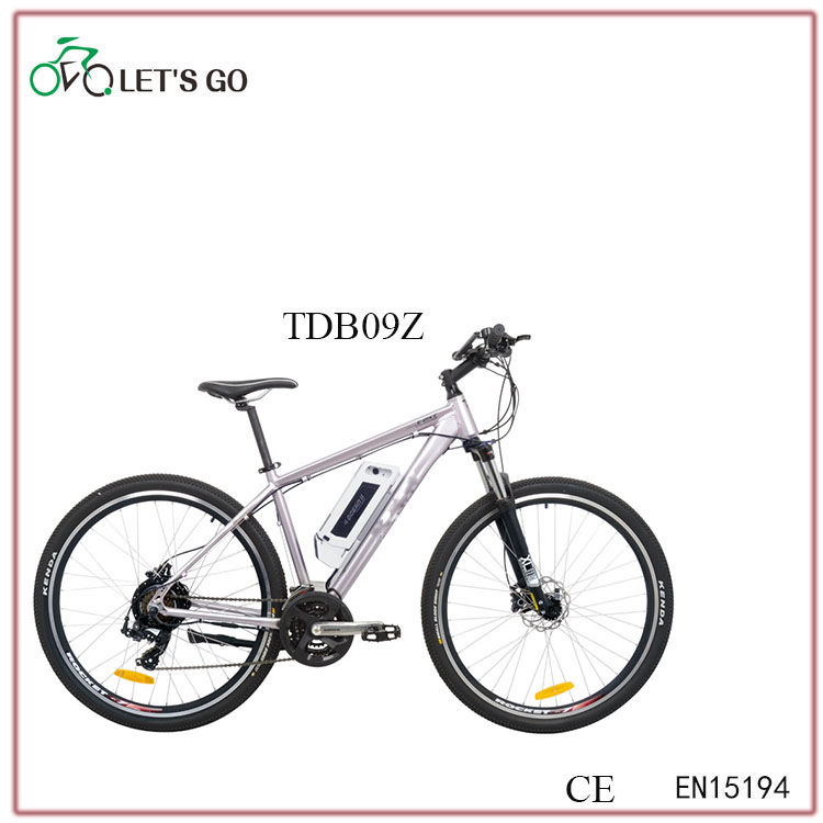 "29""high performance male ebike"