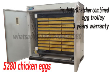 2015 best quality automatic egg incubator made in china(5000 eggs incubator)