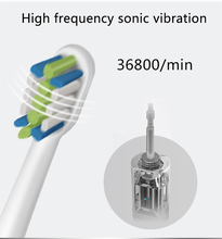 Top quality replacement soft sensetive DuPont bristle electric toothbrush heads
