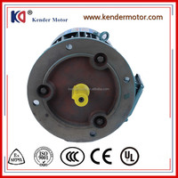 Y2 Series AC Electric Motor Cast Iron 2p 0.75kw