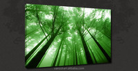 Morning forest landscape canvas prints for home decor
