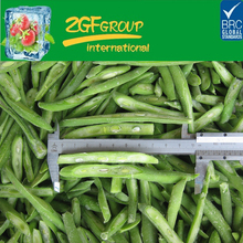 frozen healthy high quality canned french beans whole or cut
