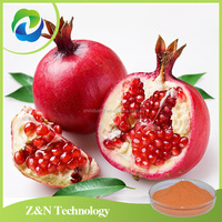 Big Discount Factory price organic pomegranate peel extract powder