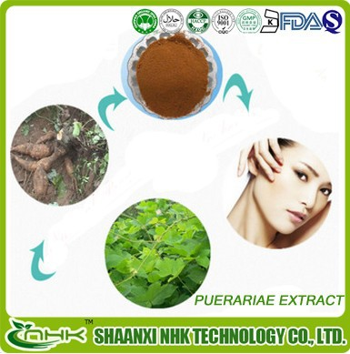 buy pueraria mirifica, pure pueraria mirifica extract from GMP manufacturer
