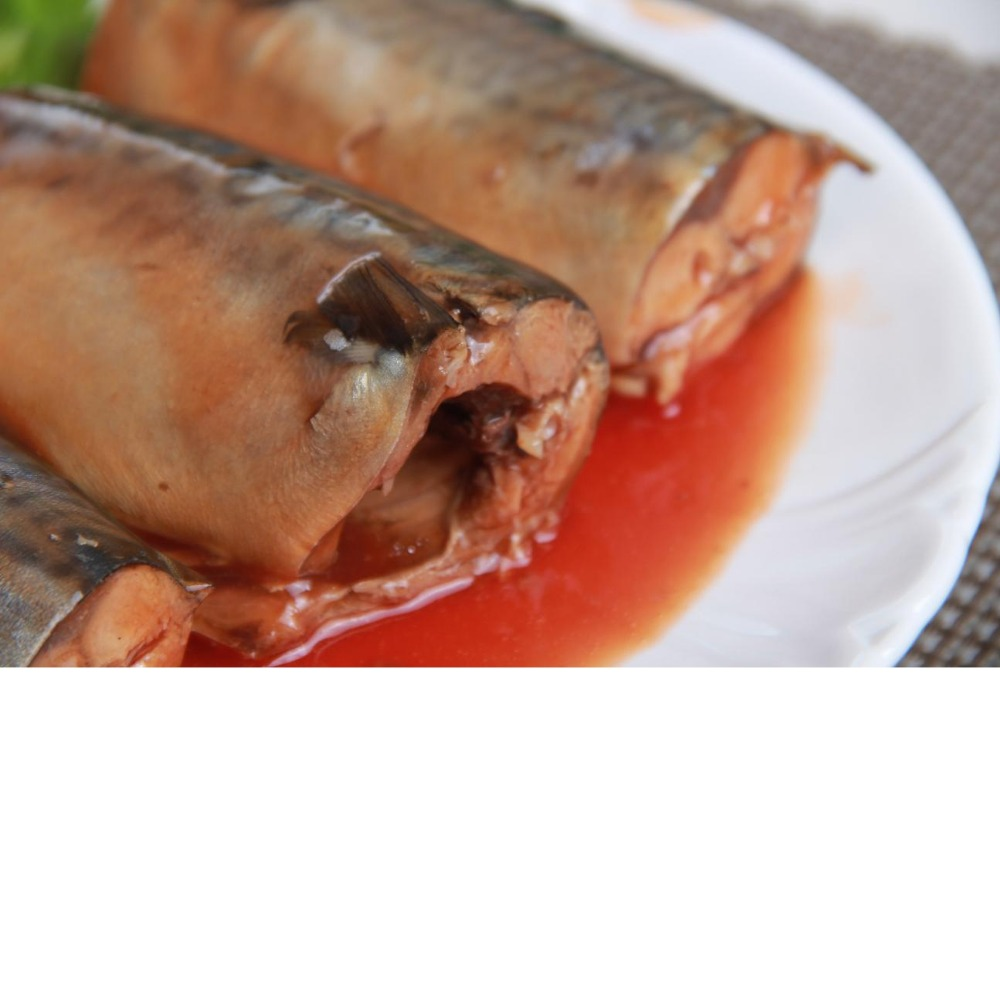 FDA mackerel can in tomato sauce canned mackerel