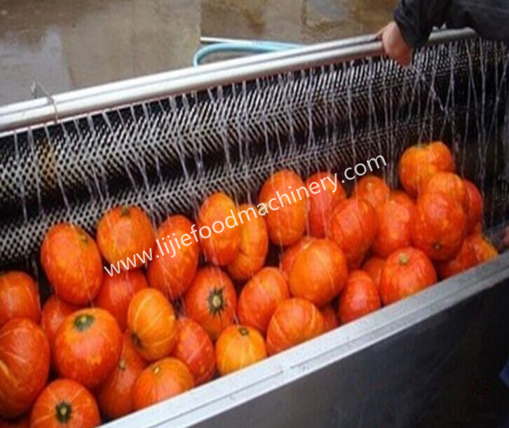 Commercial Pumpkin/Carrot Brush Washing Machine
