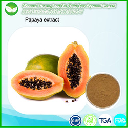 China factory supply high quality papaya extract/papaya fruit extract powder