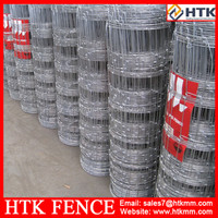 China outdoor security galvanized fence