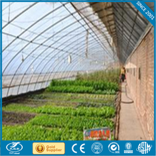 lexan polycarbonate sheet commercial greenhouse waterproof pe cover garden greenhouse exotic tents