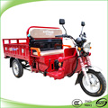 load capacity 500kg 3 wheel car tricycle with 2 seats