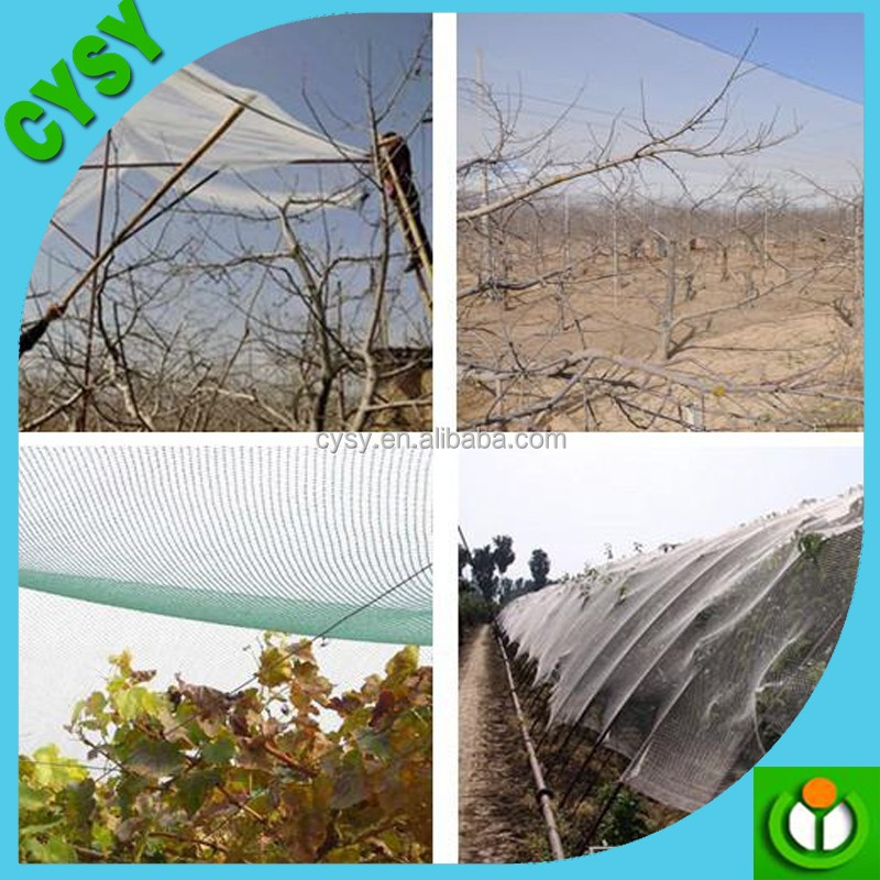 new performance anti hail net plants covers,used hdpe multi filament hail protection net crops resist hail net