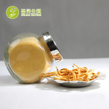 Factory Supply Plant Extract Mushroom Cordyceps Militaris Price Cordyceps
