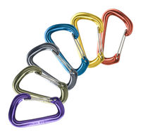 Best Quality Flat Style D Shaped Wire Gate Carabiners with Custom logo