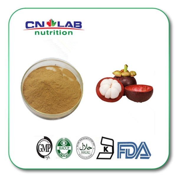 Pure Natural Mangosteen Extract Powder with Mangostin 10%