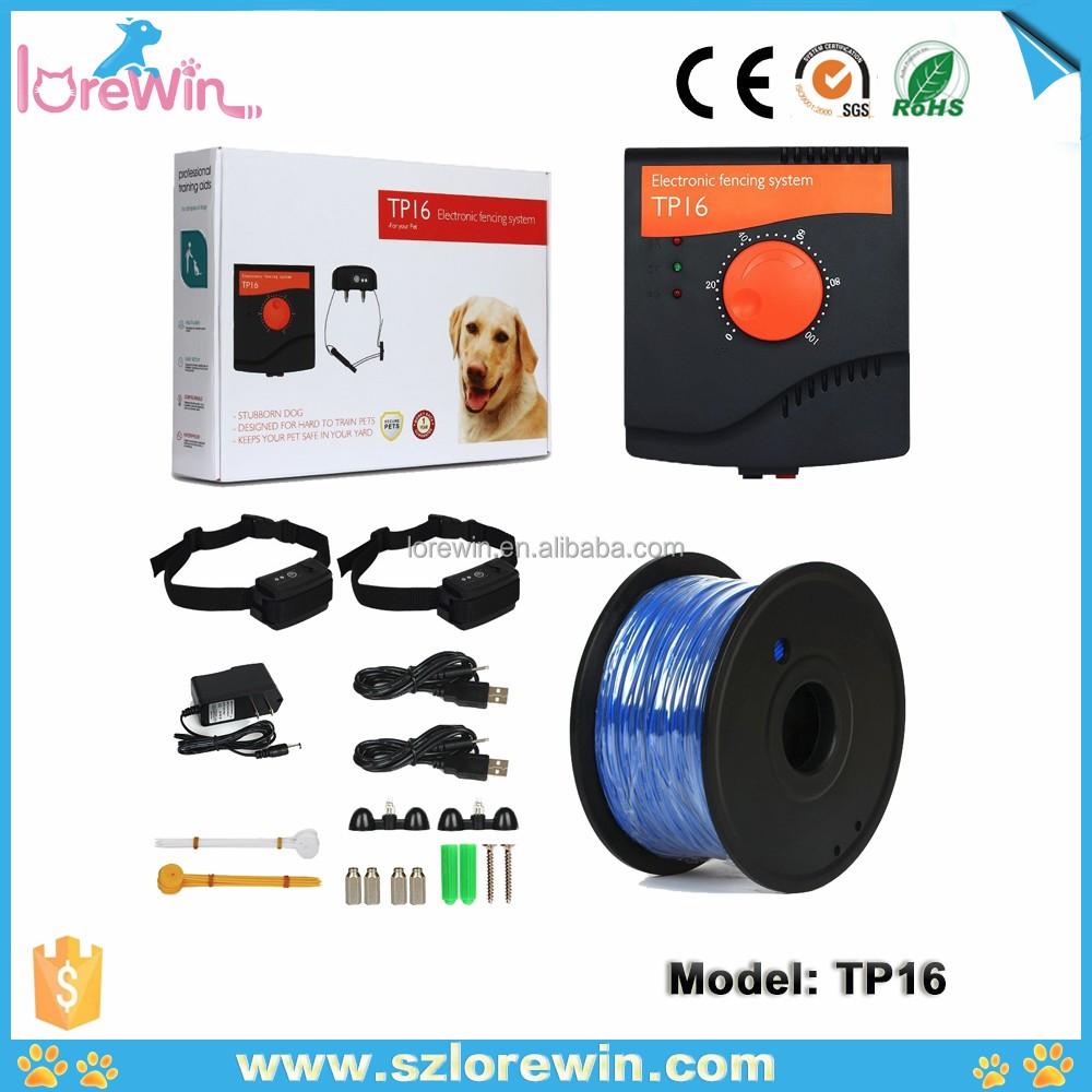 lorewin tp16 newest dog