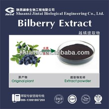 Hot sell 100% natrual cranberry extract anthocyanins