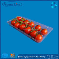 black esd plastic tray electronic