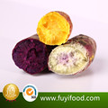Chinese Fresh Purple Sweet potato