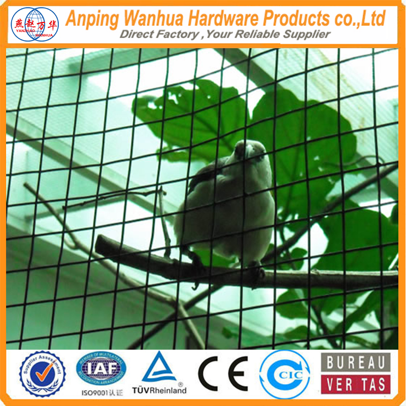 1x1 welded wire net for bird cage