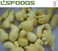 Chinese IQF Frozen Ginger Cubes Made in China