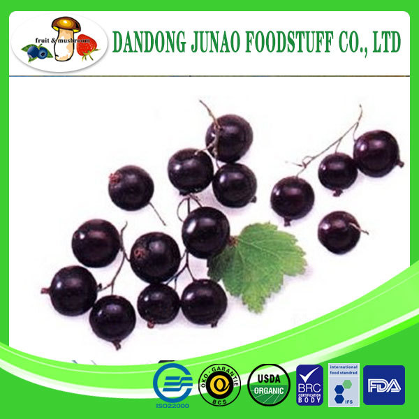supply cultivated iqf black currant