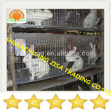 mother breeding rabbit cage farming