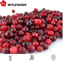 fresh new crop IQF Frozen lingonberry With Good Quality