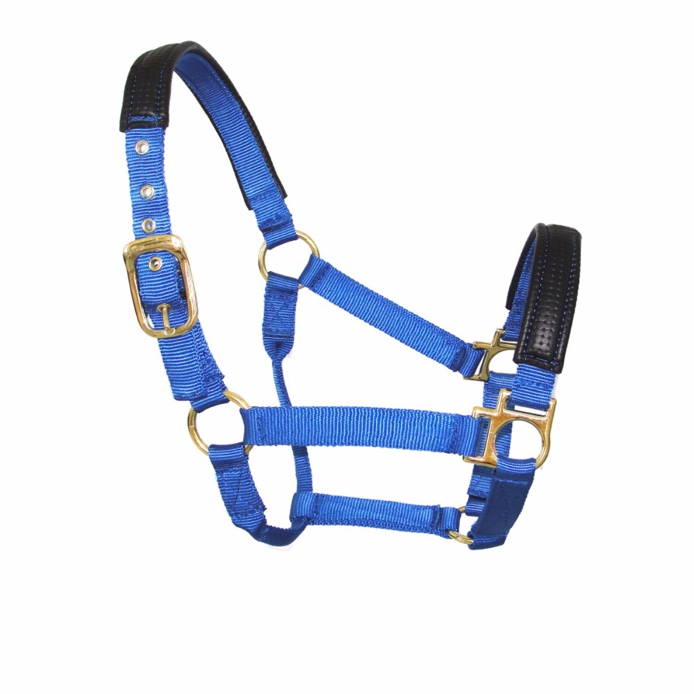 Nylon Leather Halter For Horse With Hardware