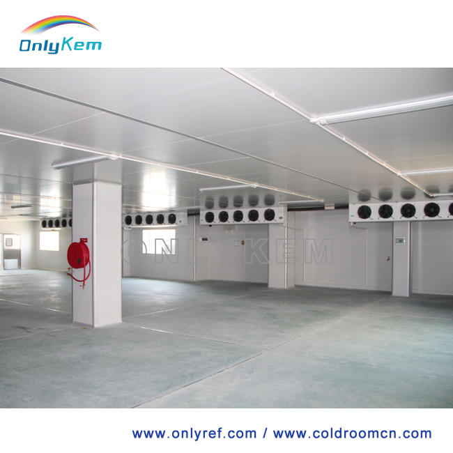 how to clean a cold storage room