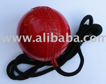 cricket ball for training