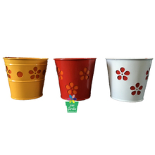 Assorted colors powder coated zinc crown planter tea cup and saucer flower pot