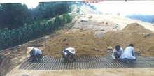 Uniaxial High Density polyethylene and Polyester Soil Reinforcement Geogrid factory prices
