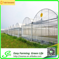 High quality metal structure for greenhouse