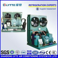 Refrigeration Condensing Unit for Cold Storage, Freezer (JZBF Series Condensing Unit with Bitzer Semi-hermetic Compressor)
