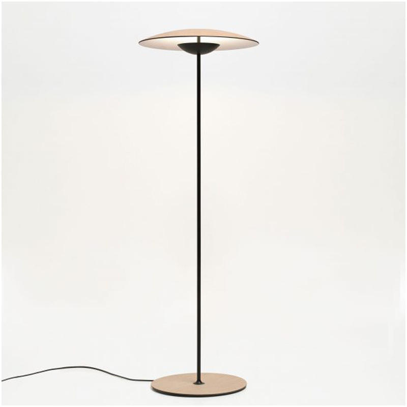 Loft industrial style living room bedroom furniture wrought iron eye dimmable floor lamp