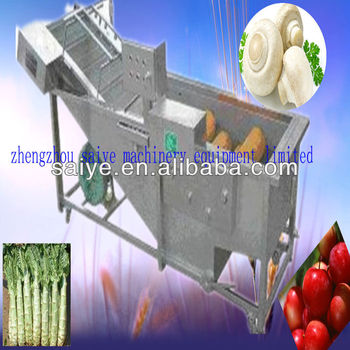Double wave lettuce washing machine