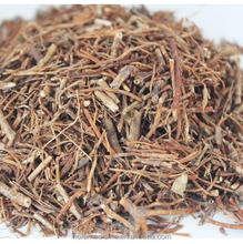 Bulk supply Radix Gentianae rhizoma cuts natural herb medicine