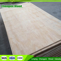 Good Quality Furniture Plywood Veneer Board