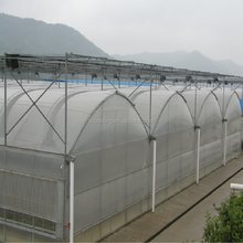 Hot sell custom industrial economical multi span greenhouse