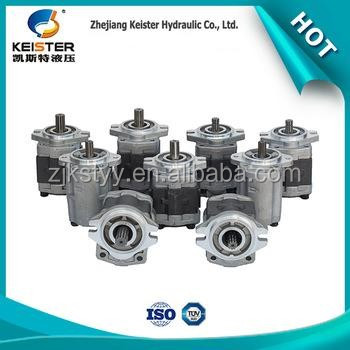 Professional stainless steel lubrication hydraulic gear pump gear oil pump
