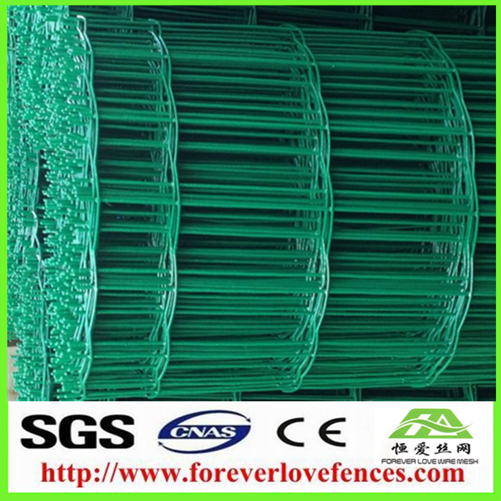 50x50mm Green PVC coated Euro rolled wire mesh fence/Holland fence