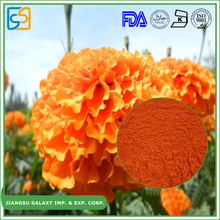 Wholesales factory price pigment lutein plant marigold extract