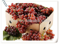 Organic Table grapes