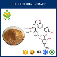 Natural Herbal extract EP7.0 Ginkgo Biloba Extract with DMF,GAP/High Quality Ginkgo Biloba p.e.
